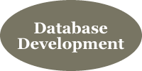 Database Development with Integrated Digital Solutions